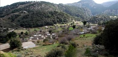 erysimum-pezoulia-mountain-retreat-selakano-lasithi-crete-1 - Alargo | Håndplukkede ferieboliger på Kreta, Korfu og Paros